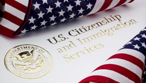 Logo for US Department of Homeland Security and be sure to contact a seasoned Chicago immigration attorney now